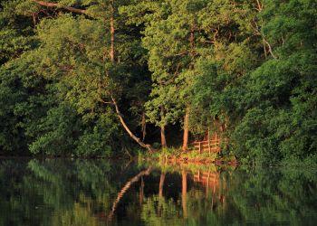 Ein Platz zum Verweilen am Ostufer des Manhagener Sees.